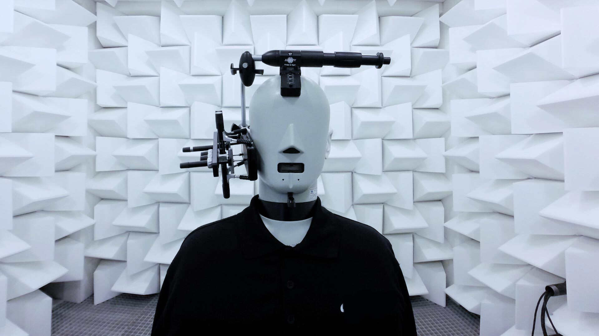 Head and torso simulator (short: HATS), which is used to conduct audio tests